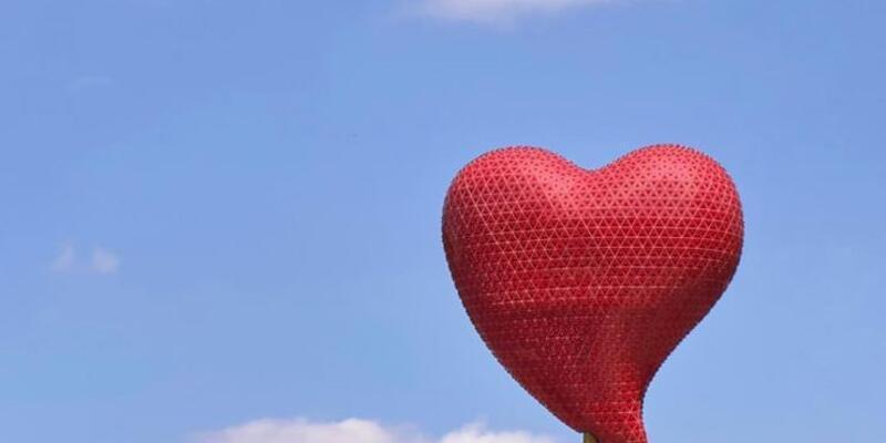 Kalp ve beyin düşünüldüğünden daha 'bağlantılı'