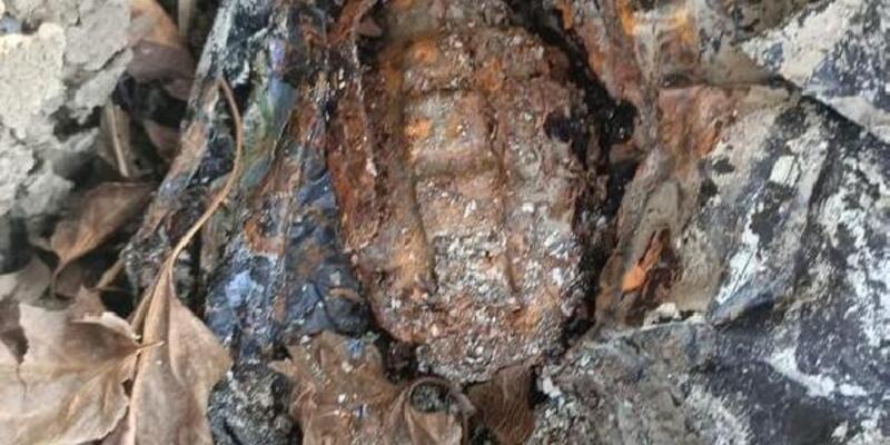 Adana'da ağaç kovuğunda el bombası bulundu