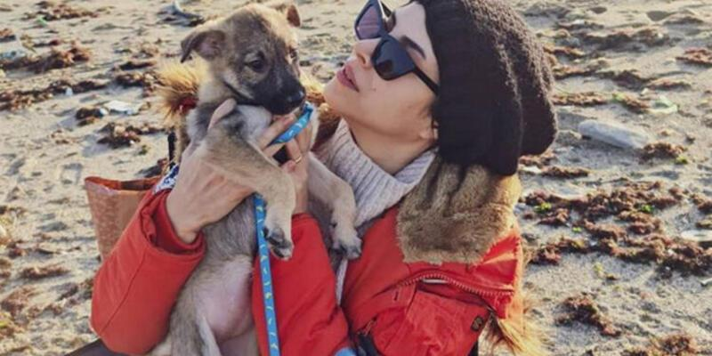 Deniz Baysal'ın köpeği Bobi sağlığına kavuştu