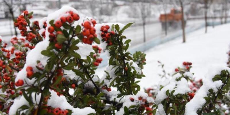 Eskişehir'de yılın ilk karı yağdı