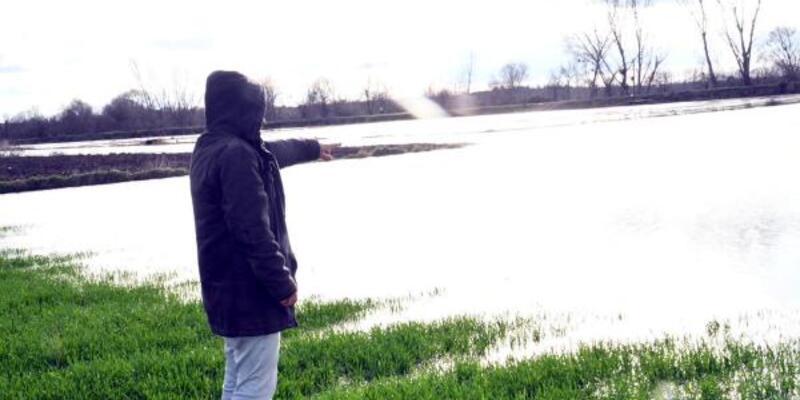 Edirne'ye yağan yağmur çiftçiye merhem oldu