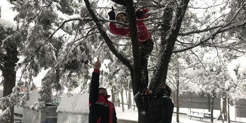 Kar manzarası çekmek isterken dronu ağaca takıldı