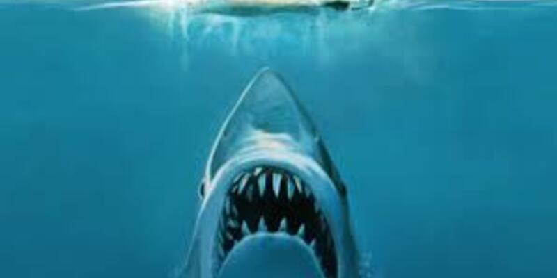 En İyi Köpek Balığı Filmleri: En Çok İzlenen Ve Beğenilen 10 Köpek Balığı Filmi (İmdb Sırasına Göre)