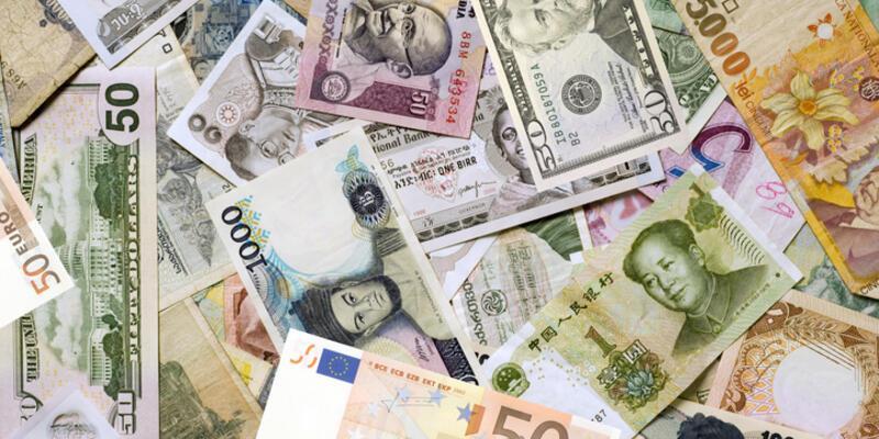 Güncel dolar kuru ne kadar, euro kaç TL? Anlık döviz kurları 24 Ocak 2021 Pazar