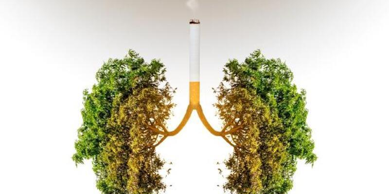 Sigara içen her 4 kişiden 1'inde KOAH var