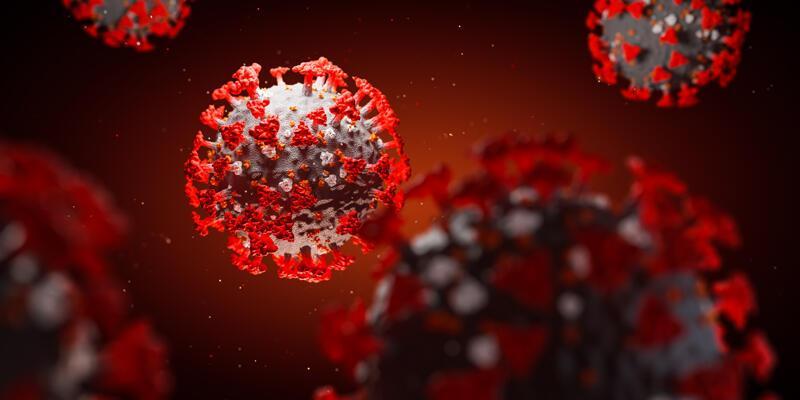 Bir kentte daha mutasyonlu virüs tespit edildi