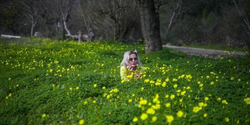 Antalya'da yalancı bahar: Çiçekler açtı