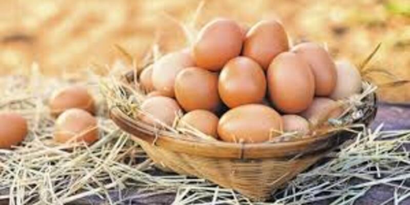 Yumurta Kaç Kalori, Yumurtanın Besin Değerleri Nelerdir? Haşlanmış Yumurta Kaç Kalori Olur?