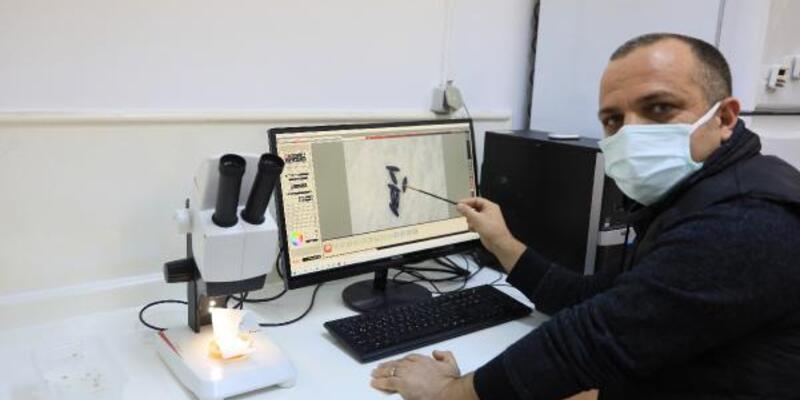 Prof. Dr. Çetin: Sivrisinek koronavirüs taşımıyor