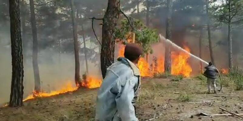 Denizli'de orman yangını: 4 hektar alan yandı