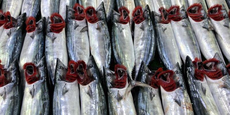 Deniz mahsüllerini fazla tüketmenin zararları