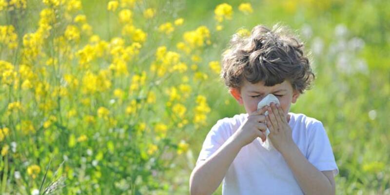 Alerjik hastalıkların oranı son 20 yılda 3 kat arttı! İşte alınacak önlemler