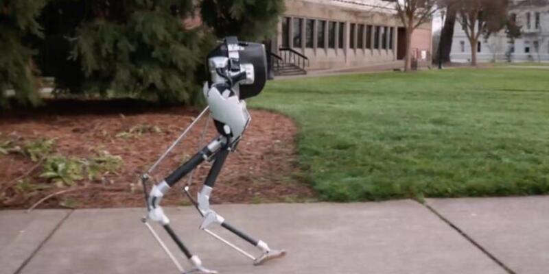 Agility Robotics yeni robotu tüm arazilerde çalışabiliyor
