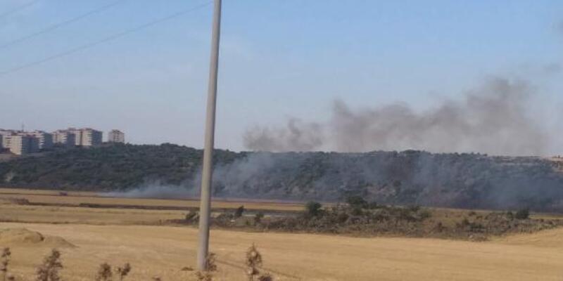 40 dönüm ekili buğday yangında küle döndü