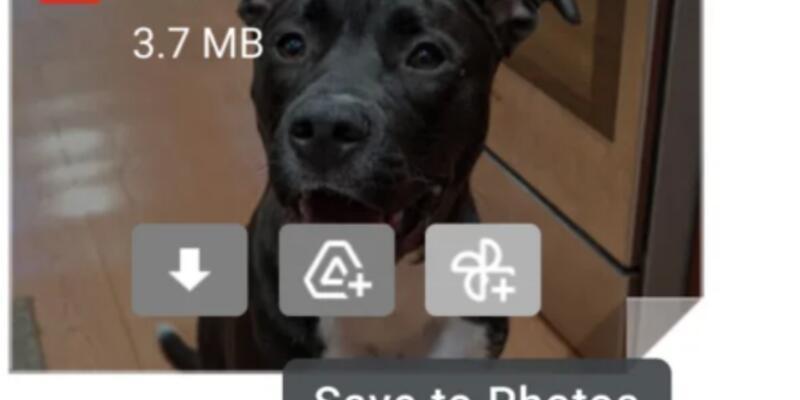 Google Fotoğraflar'a kaydetmenize izin çıktı