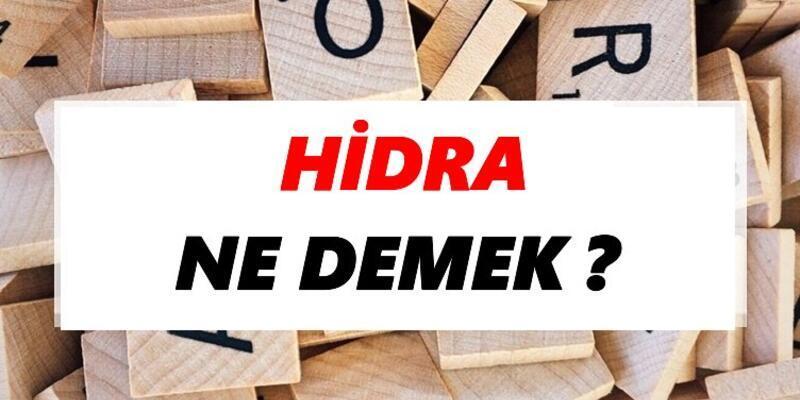 Hidra Ne Demek? TDK'ya Göre Hidra Kelime Anlamı Nedir?
