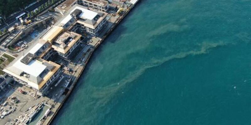 Doç. Dr. Balcı: Marmara denizi foseptik çukuru haline geldi