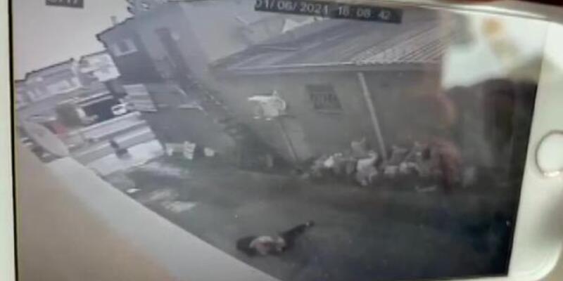 Genç kız iş yerinin penceresinden düştü