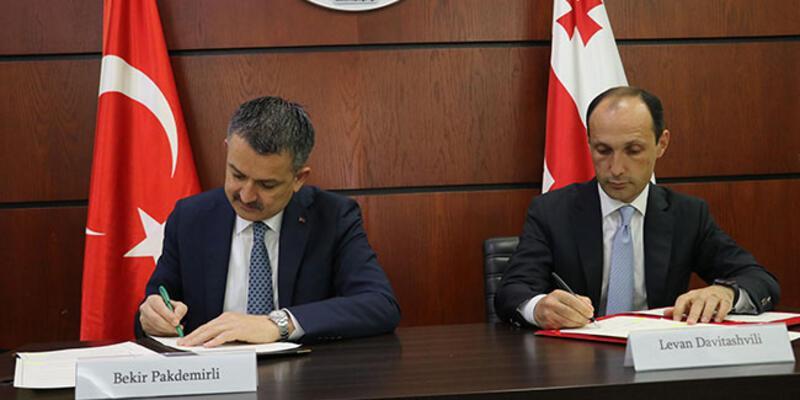 Türkiye ile Gürcistan arasında iş birliği anlaşması
