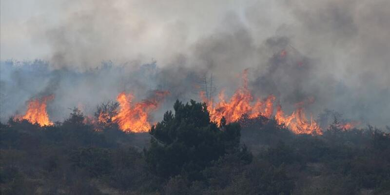 Eşyalarını yakarken ormanı da yaktı