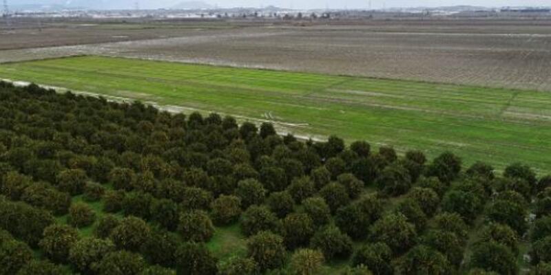 Tarım sezonunda yağışlar azaldı