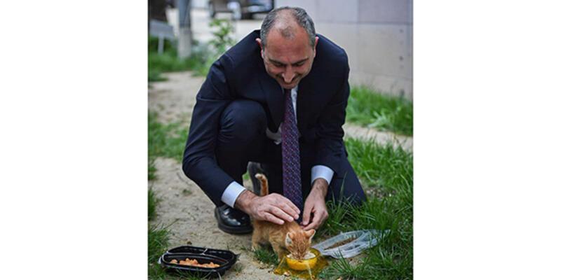 """Adalet Bakanı Gül'den Hayvan Hakları Yasası için """"geri sayım başladı"""" mesajı"""