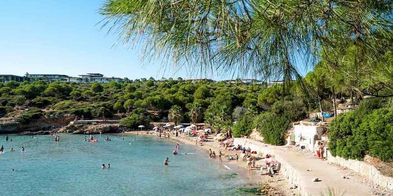 Ekmeksiz Plajı Nerede, Nasıl Gidilir? Ekmeksiz Plajı Kapalı Mı, Kamp Yapılıyor Mu?