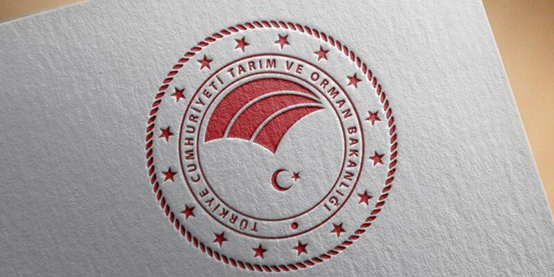 Tarım ve Orman Bakanlığı'ndan, Türkiye'nin büyükbaş hayvan varlığı açıklaması