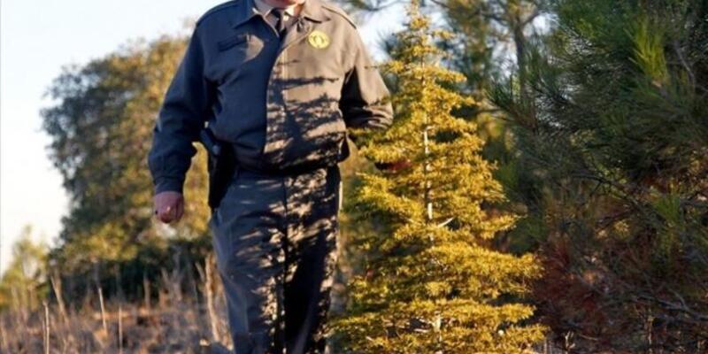 OGM kura sonuçları 2021 açıklandı mı? Orman Genel Müdürlüğü işçi alımı kura çekimi ne zaman?