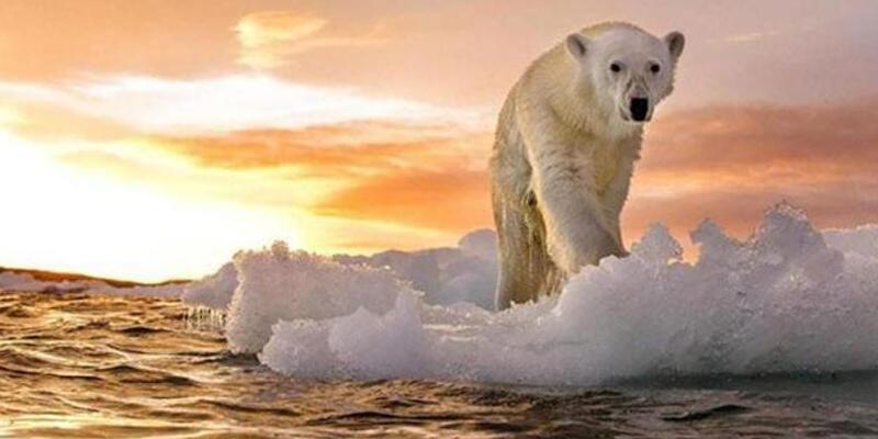 Küresel ısınma tehdidi! 107 yılın en yüksek sıcağı