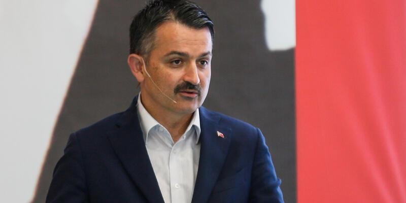 Marmara'daki balıklarda sorun mu var? Bakan Pakdemirli'den kritik açıklama