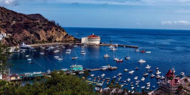 Bouvet Adası Nerede, Nasıl Gidilir? Bouvet Adası Hakkında Bilinmesi Gerekenler