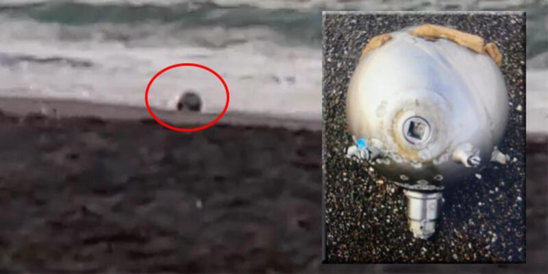 Kıyıya mayın tetikleyicisi vurdu! Polis alarma geçti