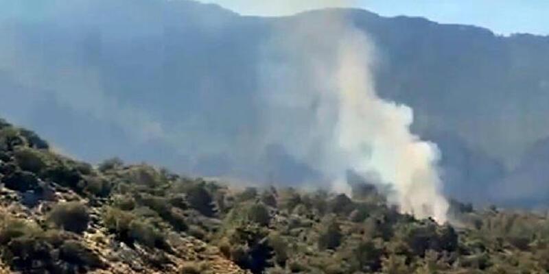 Fethiye'de 5 dönüm kızılçam ormanını küle döndü