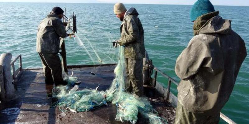 İnci kefalinde av yasağı sona erdi, balıkçılar ağlarını göle bıraktı