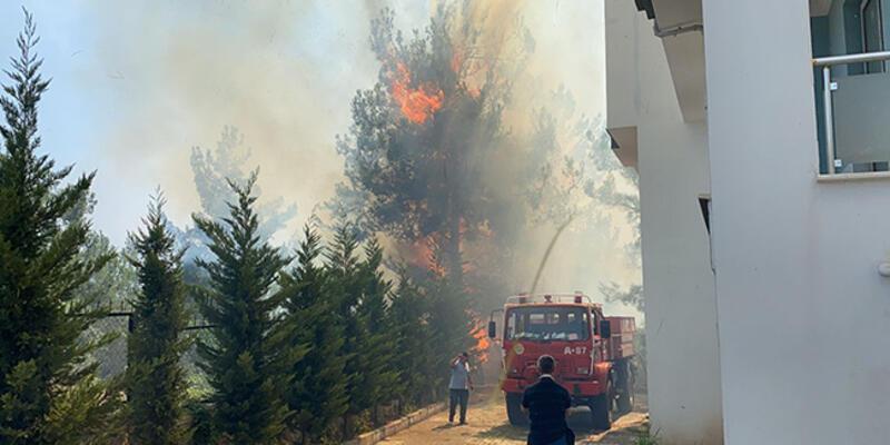 Osmaniye'de orman yangını: 4 zanlı gözaltına alındı