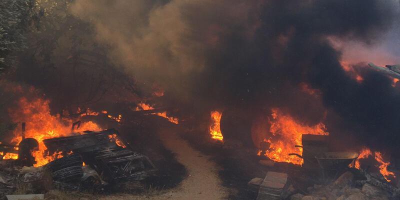 Son dakika... Antalya ve Adana'dan sonra Mersin'de de yangın