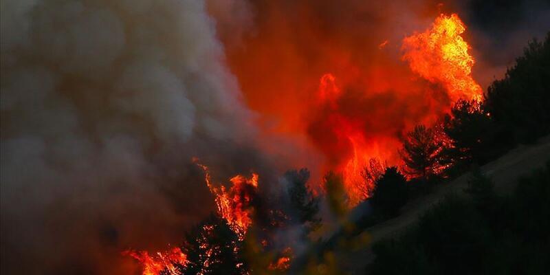 Prof. Mikdat Kadıoğlu'ndan yangın açıklaması: Fön rüzgarlarıyla her yer kurudu, ısındı