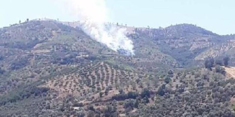İzmir Kiraz'da orman yangını çıktı