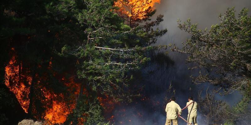 Yangın fırsatçıları