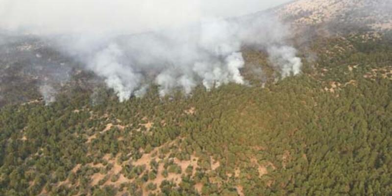 Muğla Kavaklıdere'deki yangında 4'üncü gün; alevler Menteşe ilçesine ilerliyor