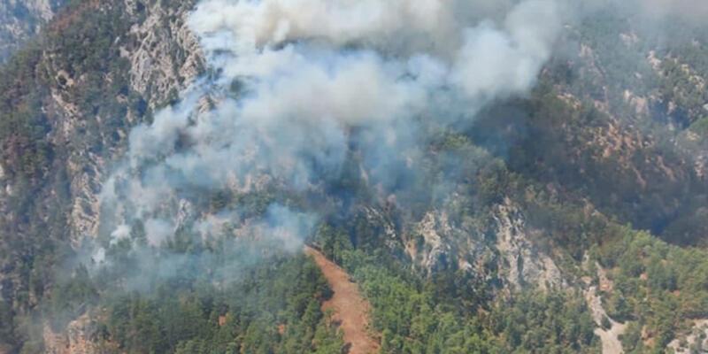 SON DAKİKA: Köyceğiz'de orman yangını