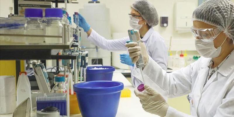 PCR testi nedir, nasıl yapılır? PCR testi nerelerde yapılıyor, ücretli mi?