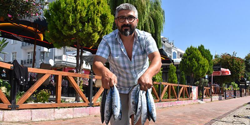Karadeniz'de sezonun ilk palamutları Sinop'ta tezgahlardaki yerini aldı