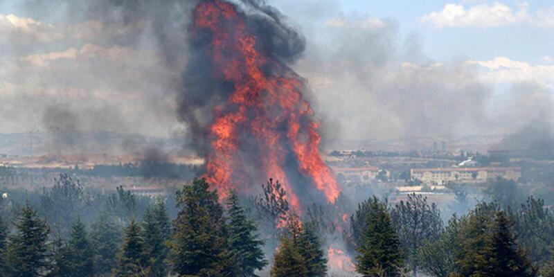 AOÇ'deki yangının şüphelisine en az 10 yıl hapis istemi