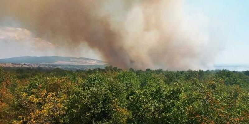 Gelibolu'da orman yangını; 20 dönüm alan zarar gördü