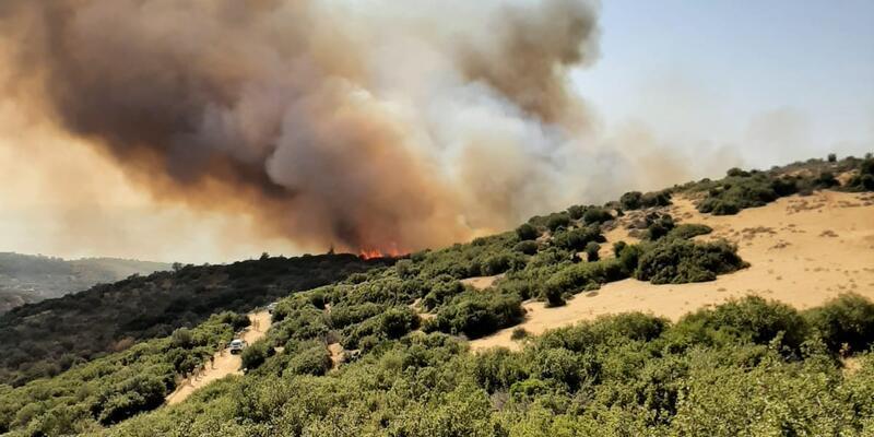 Aynı bölgede son bir ayda 10'uncu orman yangını