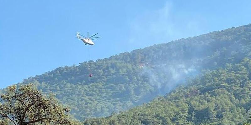 Milas'ta orman yangını büyümeden kontrol altına alındı