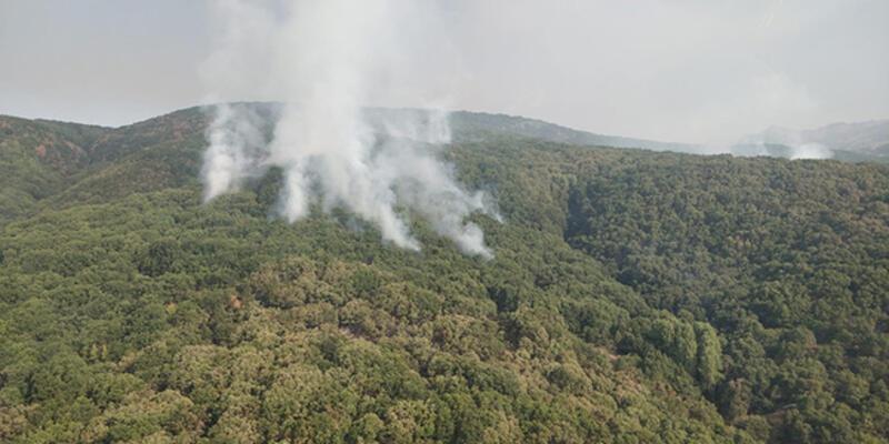 OGM: Tunceli'de 2 helikopter ve 1 uçakla yangına müdahale sürüyor