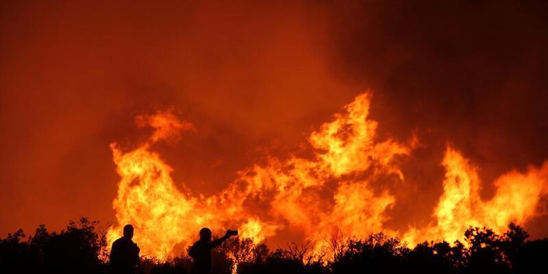 """California'daki """"Caldor"""" yangını 756 kilometrekare alanı tahrip etti"""